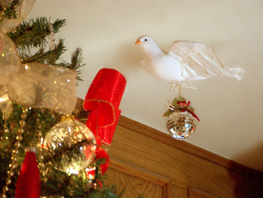 a dove hanging an ornament on the christmas tree